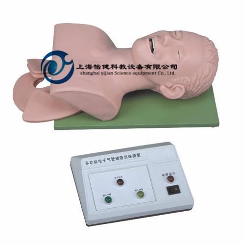 电子人体气管插管模型