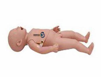 新生儿生长指标评定及护理训练模型