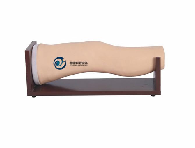 膝关节腔内注射模型