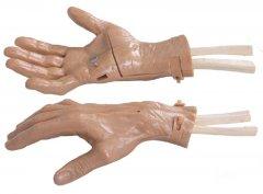 腕关节镜检查模型
