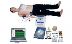 高级心肺复苏、AED除颤模拟人(计算机控制、二合一组合)