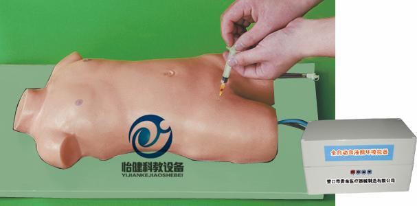 儿童股静脉与股动脉穿刺电动模型